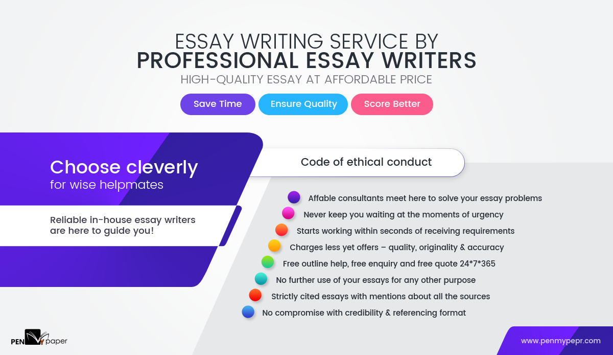 Essay writing professionals